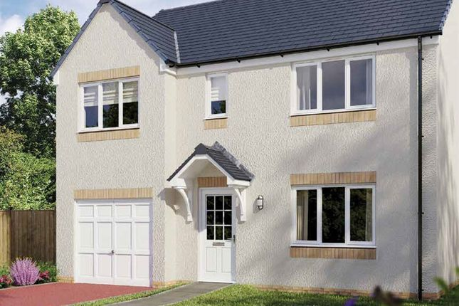 "Thumbnail Detached house for sale in ""The Thornwood"" at Hamilton Road, Larbert"
