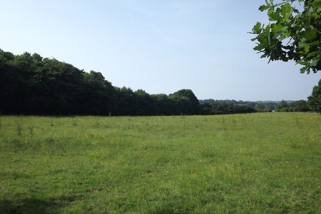 Thumbnail Land for sale in Swife Lane, Broad Oak, Heathfield
