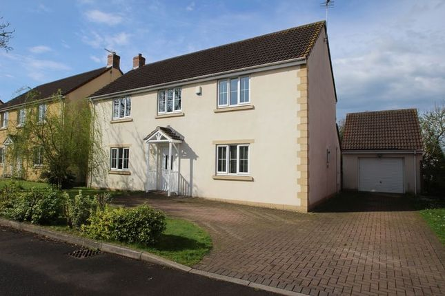 Thumbnail Detached house for sale in The Orchards, Meare, Glastonbury