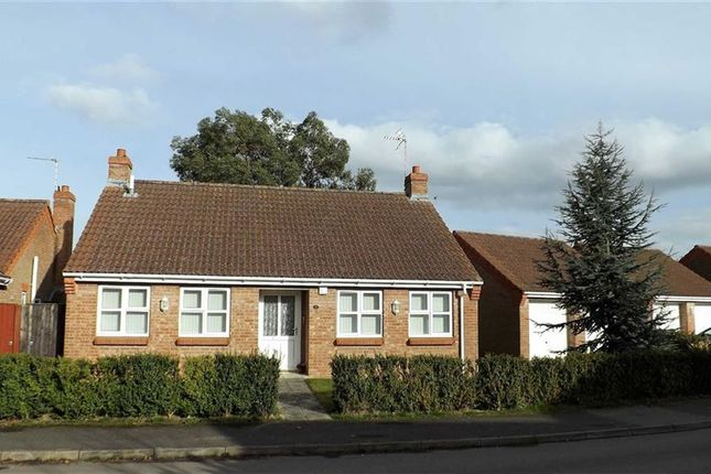 Thumbnail Detached bungalow for sale in Strawberry Fields Drive, Holbeach St. Marks, Holbeach, Spalding