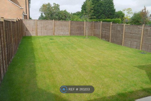 Thumbnail Semi-detached house to rent in Bedgrove, Aylesbury