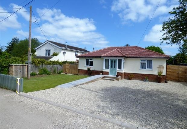 Thumbnail Detached bungalow for sale in Great Burches Road, Benfleet, Benfleet