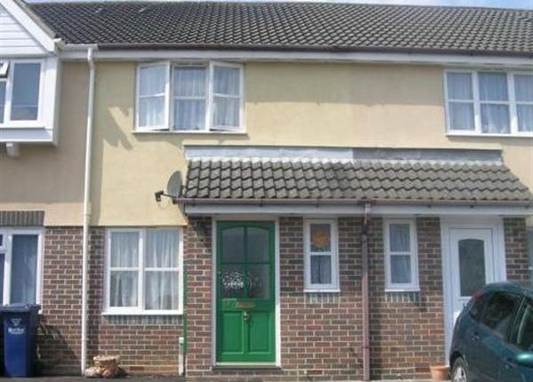 Thumbnail Terraced house to rent in Pimpernel Court, Wyke, Gillingham