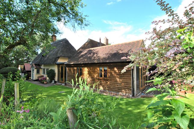 Thumbnail Cottage for sale in Wickham Street, Newmarket