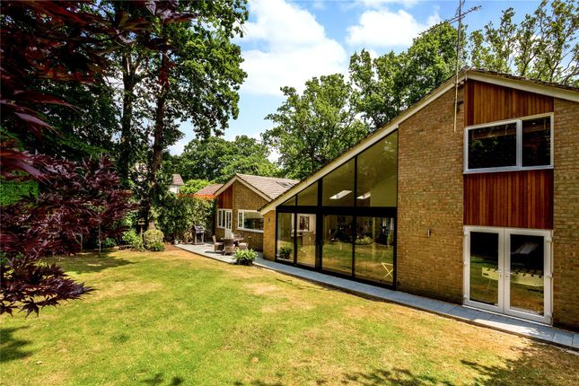 Thumbnail Detached house for sale in Dartnell Park Road, West Byfleet, Surrey