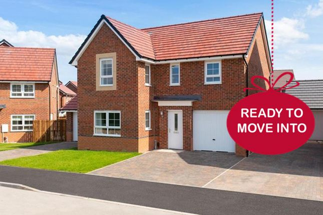 "Thumbnail Detached house for sale in ""Halton"" at Morgan Drive, Whitworth, Spennymoor"