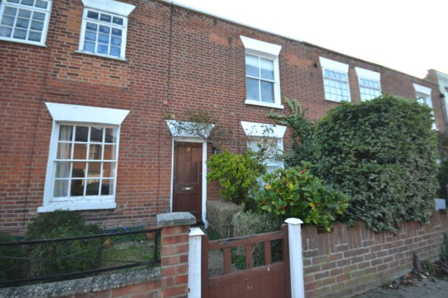 Thumbnail Terraced house to rent in Roman Road, Colchester
