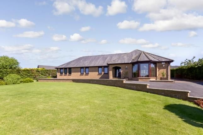 Thumbnail Bungalow for sale in Ayr Road, By Douglas Water, South Lanarkshire