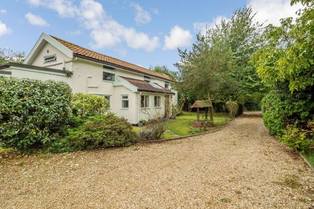 Thumbnail Detached house for sale in Chapel Road, Bunwell, Norfolk