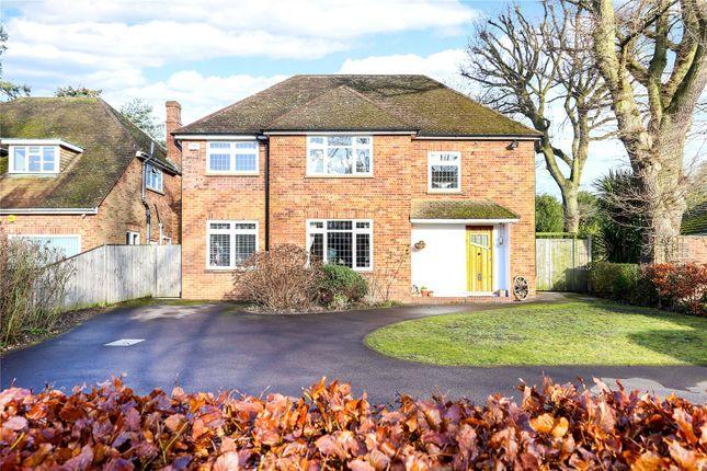 Thumbnail Detached house for sale in Cedar Road, Farnborough, Hampshire
