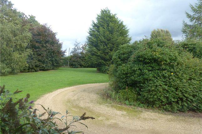 Drive of Park Farm Bungalow, Cranfield Road, Wavendon MK17