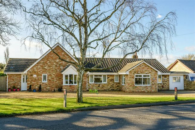 Thumbnail Detached bungalow for sale in Warboys Road, Pidley, Huntingdon