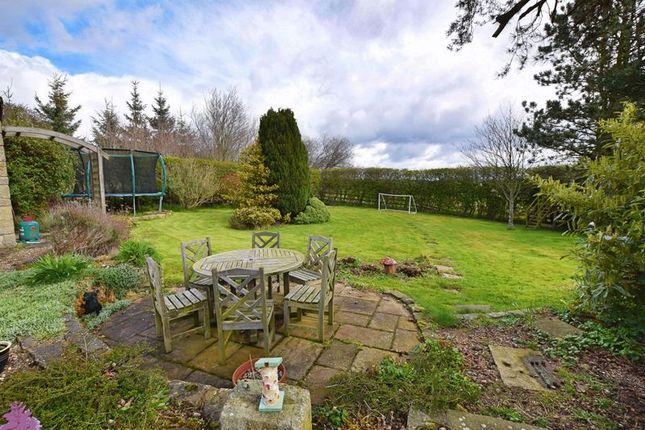 Thumbnail Detached house for sale in Lowgate, Hexham