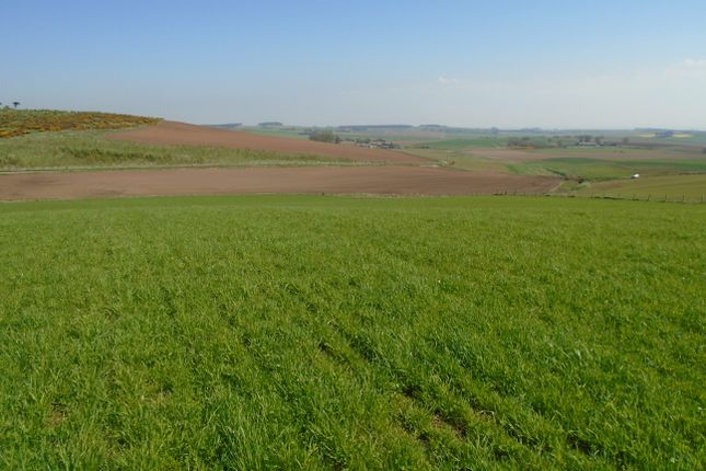 Thumbnail Land for sale in Catterline, Stonehaven