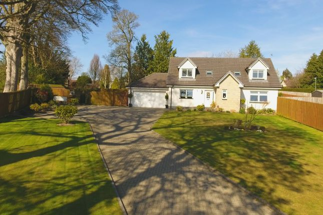 Thumbnail Detached house for sale in Bearehill Brae, Brechin