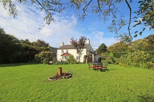 Thumbnail Property for sale in Holsworthy