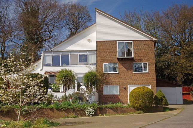 Thumbnail Detached house for sale in Hillside Road, Hastings