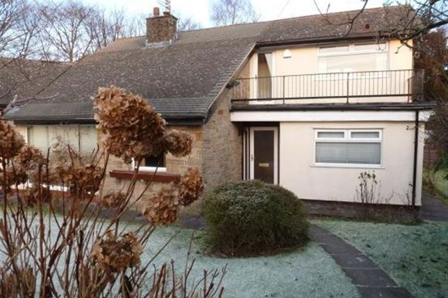 Thumbnail Detached house to rent in Brookside Close, Ramsbottom