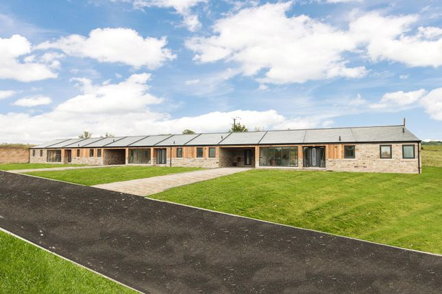 Thumbnail Barn conversion for sale in Bradley Hall Farm Phase 2, South Wylam, Northumberland