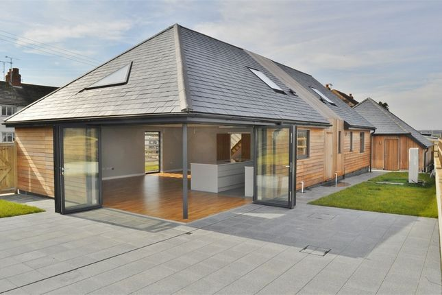 Thumbnail Detached house for sale in Fuller Street, Fairstead, Chelmsford