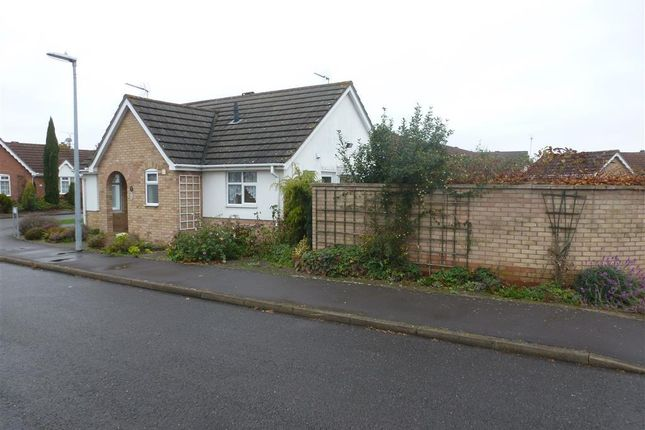 Thumbnail Detached bungalow to rent in Rigg Close, South Brink, Wisbech