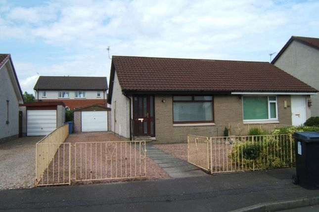 Thumbnail Bungalow to rent in Bryce Avenue, Falkirk, Falkirk