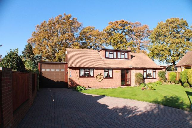 Thumbnail Detached house for sale in Littlewood Gardens, Locks Heath, Southampton