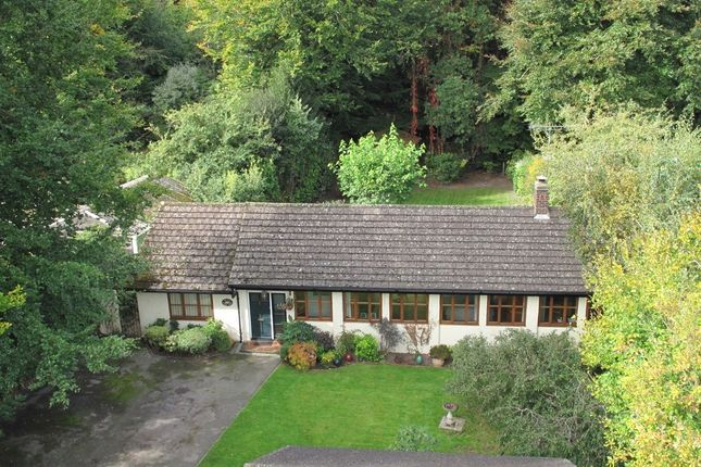 Thumbnail Bungalow for sale in The Crescent, East Grinstead