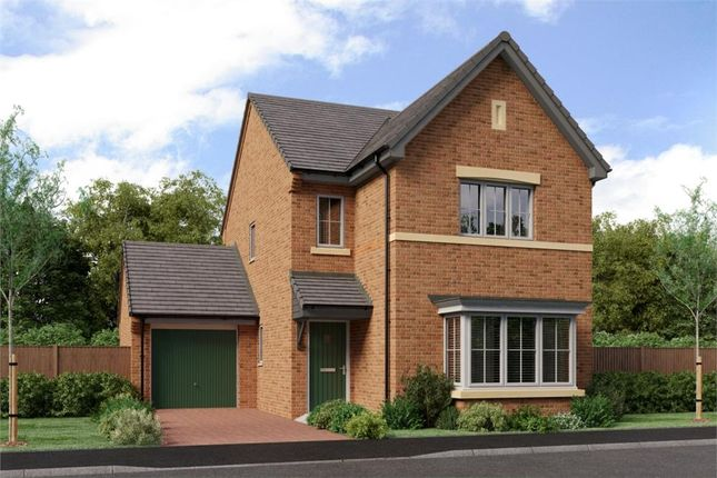 "Thumbnail Detached house for sale in ""The Esk"" at Low Lane, Acklam, Middlesbrough"
