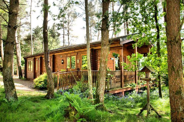 Thumbnail Lodge for sale in Dalry, Castle Douglas