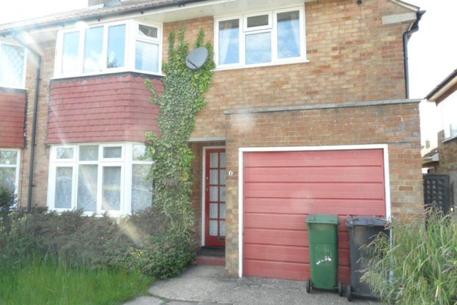 Thumbnail Property to rent in Ravenbank Road, Luton