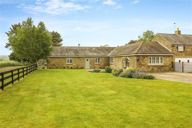 Thumbnail Barn conversion for sale in Wintrick, Morpeth, Northumberland