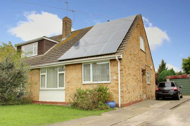Thumbnail Semi-detached house to rent in Chestnut Avenue, Beverley