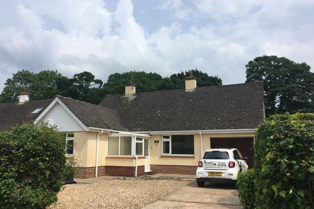 Thumbnail Bungalow to rent in Primley Mead, Sidmouth
