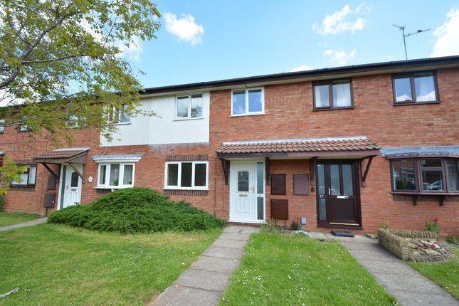 Thumbnail Property to rent in Pheasant Grove, Werrington