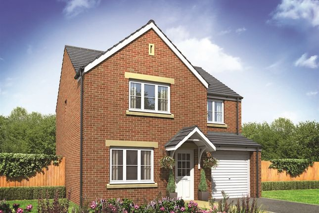 "Thumbnail Detached house for sale in ""The Roseberry"" at Derwen View, Brackla, Bridgend"