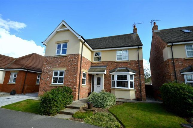 Thumbnail Detached house for sale in The Orchard, Leven, East Yorkshire