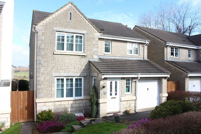 Thumbnail Detached house for sale in Maple Rise, Radstock