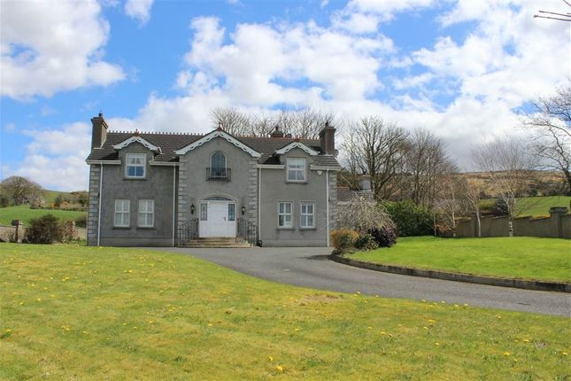 Thumbnail Detached house for sale in Carrick Road, Burren, Newry