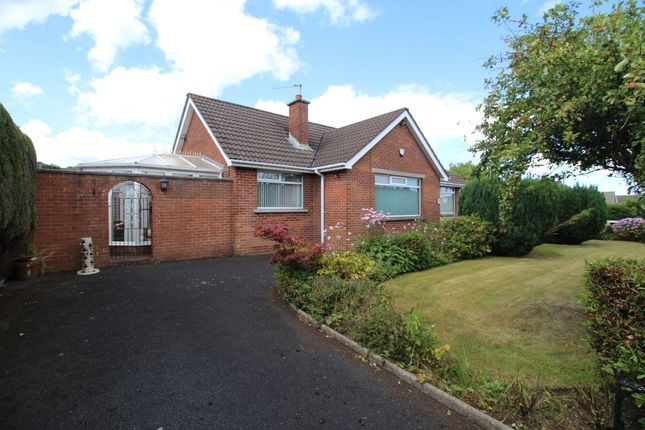 Thumbnail Bungalow for sale in Station Road, Carnalea, Bangor