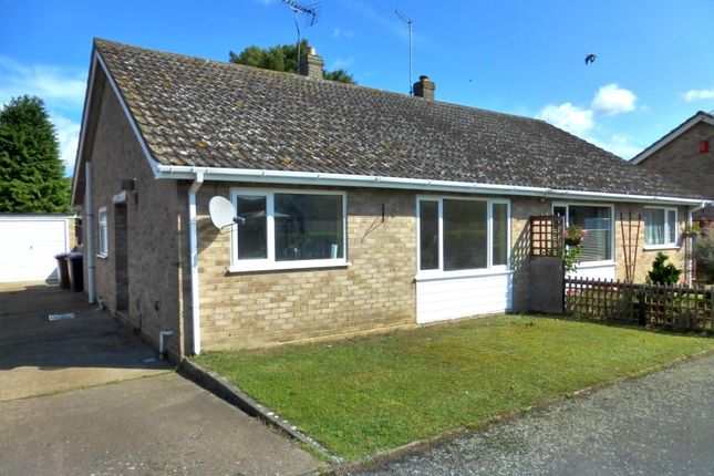 Thumbnail Semi-detached bungalow to rent in Holly Close, Red Lodge, Bury St. Edmunds
