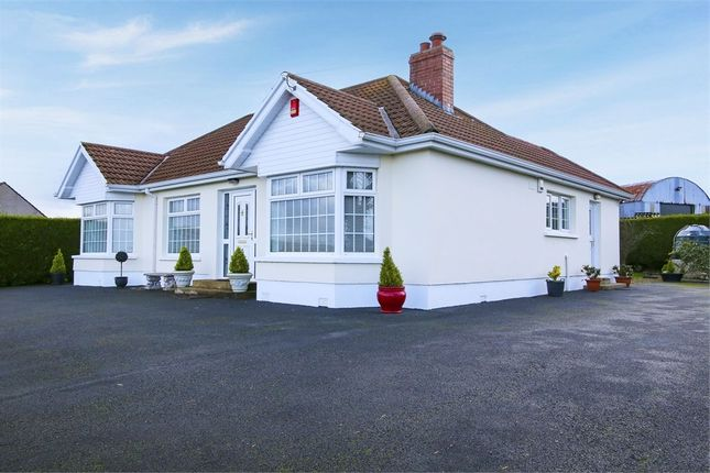 Thumbnail Detached bungalow for sale in Freughmore Road, Seskanore, Omagh, County Tyrone