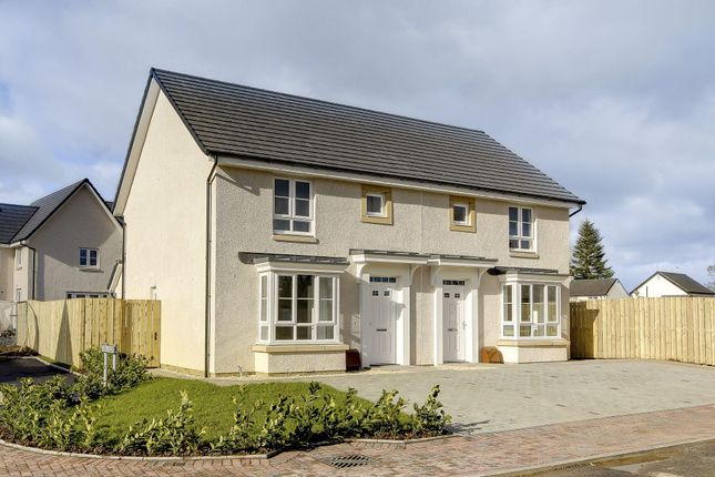 "Thumbnail Semi-detached house for sale in ""Edzell"" at Rowan Street, Wishaw"