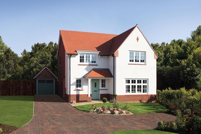 Thumbnail Detached house for sale in The Copse, Shutterton Lane, Dawlish, Devon