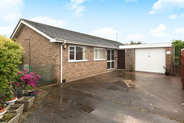 Thumbnail Detached bungalow to rent in Lugwardine, Hereford