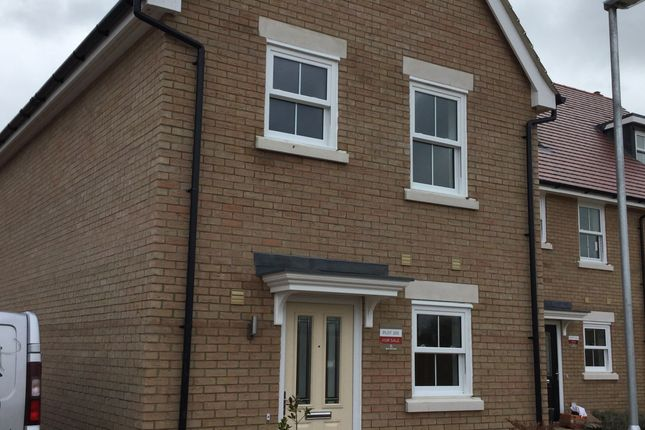 Thumbnail Semi-detached house to rent in Crick Road, Biggleswade