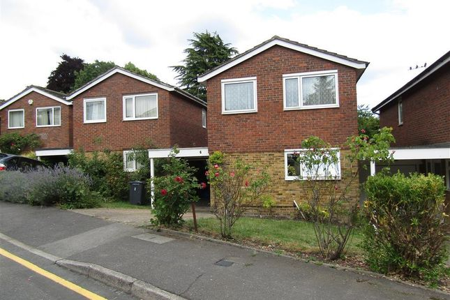Thumbnail Property to rent in Minster Drive, Croydon