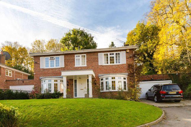 Thumbnail Detached house for sale in Cedar Close, Kingston Vale