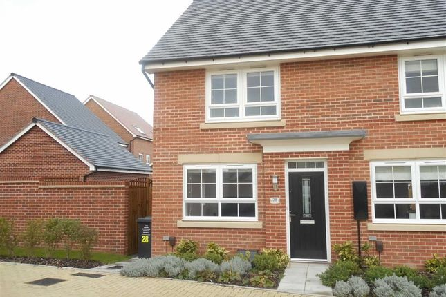 Thumbnail End terrace house to rent in Elvaston Drive, Littleover, Derby
