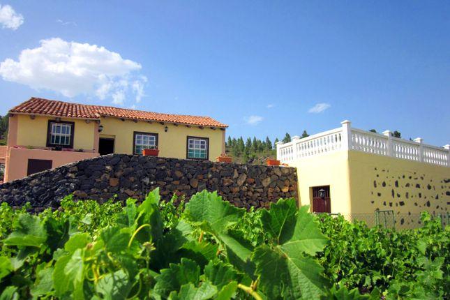 Thumbnail Finca for sale in Granadilla De Abona, Granadilla De Abona, Tenerife, Canary Islands, Spain